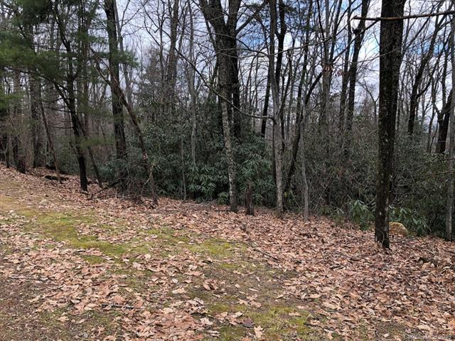 LOT 34 Laurel Park Highway, Hendersonville, NC 28739 (#3467356) :: Herg Group Charlotte