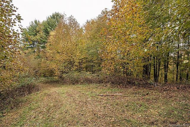 3758 (Lot 7) Rush Branch Road #7, Sugar Grove, NC 28679 (MLS #3467369) :: RE/MAX Impact Realty