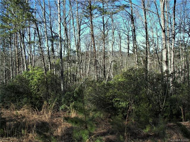 6 Acres Summerfield Lane, Rutherfordton, NC 28139 (#3467437) :: Robert Greene Real Estate, Inc.