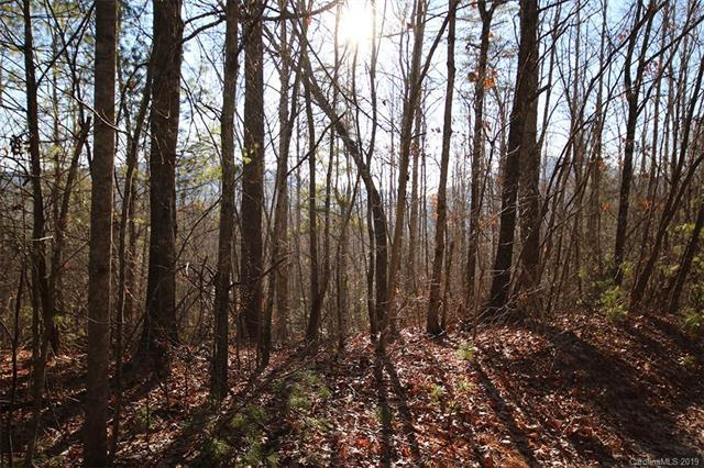 Lot 8 Shadow Ridge Drive, Fletcher, NC 28732 (#3467694) :: Exit Mountain Realty