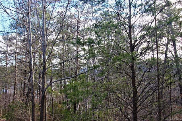 Lot 11 Highland Heights #11, Lake Lure, NC 28746 (#3467699) :: Robert Greene Real Estate, Inc.
