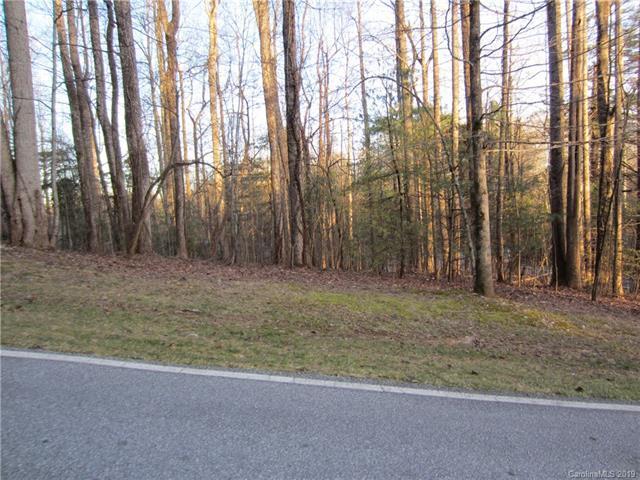 200 Bent Pine Trace, Hendersonville, NC 28739 (#3467725) :: LePage Johnson Realty Group, LLC