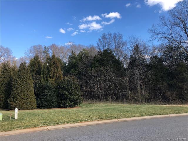 4672 Owl Creek Lane, Concord, NC 28027 (#3467750) :: Exit Mountain Realty