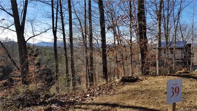 18 Tulip Poplar Trail #39, Asheville, NC 28804 (#3467841) :: Keller Williams Professionals