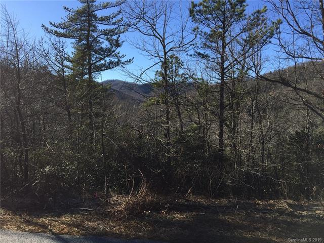 9999 Catawba Falls Parkway #218, Black Mountain, NC 28711 (#3467845) :: Exit Realty Vistas