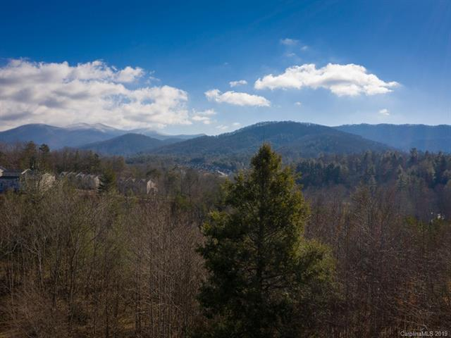 42 Governor Thomson Terrace #37, Weaverville, NC 28787 (#3467874) :: LePage Johnson Realty Group, LLC