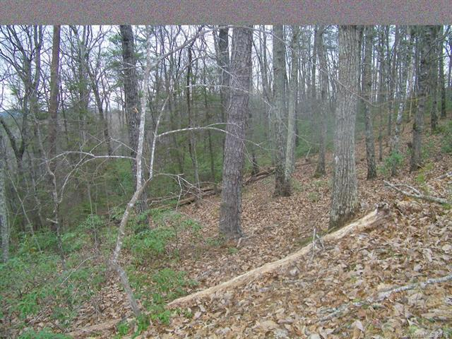 LOT 89 Chinquapin Road, Lake Lure, NC 28746 (#3467883) :: Rinehart Realty