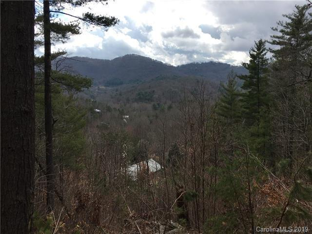 99999 Black Oak Drive #24, Asheville, NC 28804 (#3467887) :: Washburn Real Estate