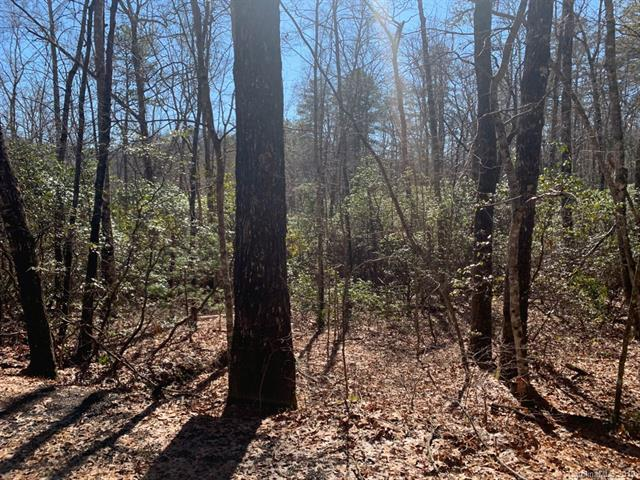 Lot J31 Galax Lane J31, Brevard, NC 28712 (#3468599) :: Exit Mountain Realty