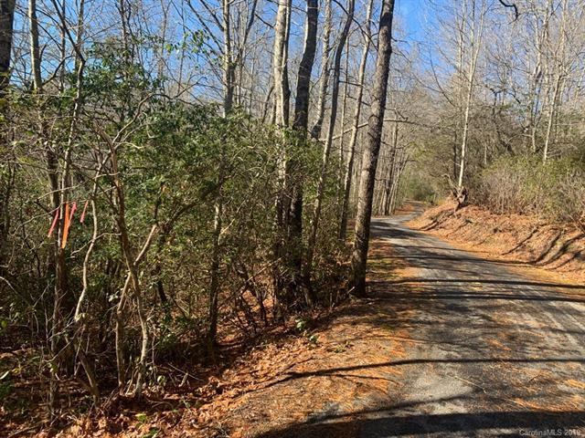 14 Lot pkg Galax Lane Multiple Lots, Brevard, NC 28712 (#3468631) :: Exit Mountain Realty