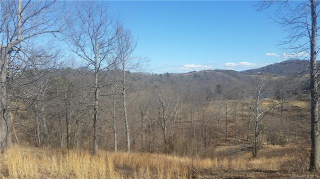 999 Olivette Crossing Parkway #63, Asheville, NC 28804 (#3468924) :: Puffer Properties