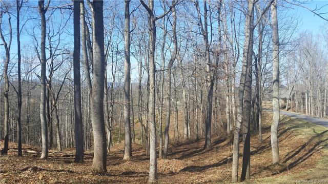 12 Tulip Poplar Trail - Photo 1