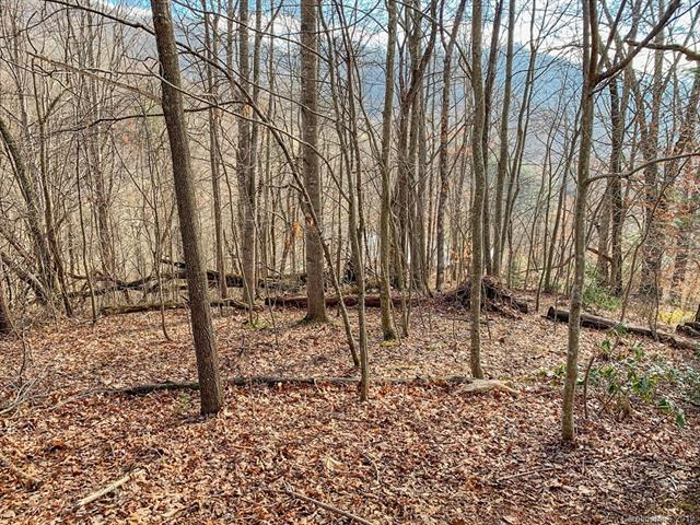 00 Utah Mountain Road, Waynesville, NC 28785 (#3469078) :: Robert Greene Real Estate, Inc.