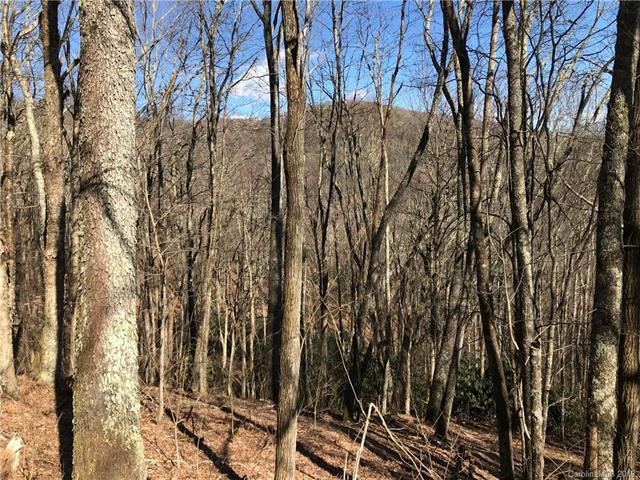 A18 Quail Ridge Drive, Maggie Valley, NC 28751 (#3469138) :: Exit Mountain Realty