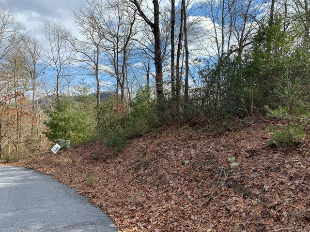 91 Laurel Thicket Lane #91, Brevard, NC 28712 (#3469990) :: Homes Charlotte