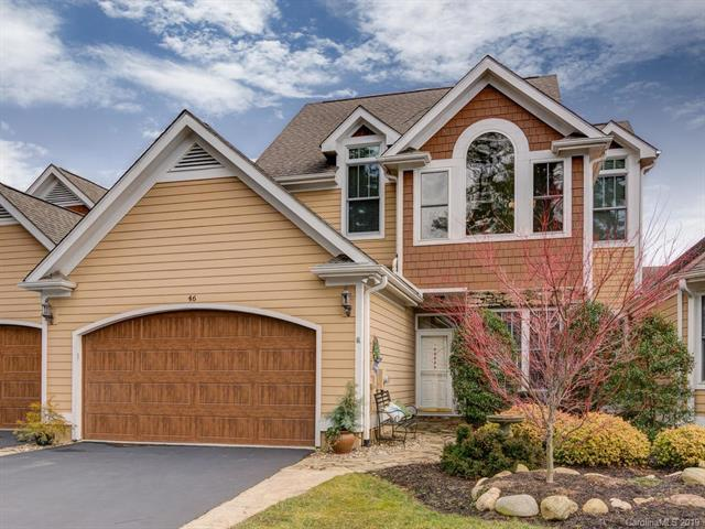 46 N Mission Hills Court, Mills River, NC 28759 (#3469991) :: Exit Mountain Realty