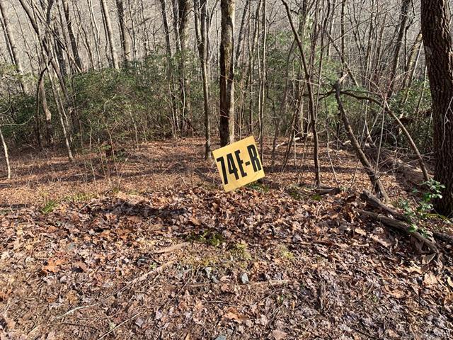74E Lightning Path 74E, Brevard, NC 28712 (#3469994) :: MECA Realty, LLC