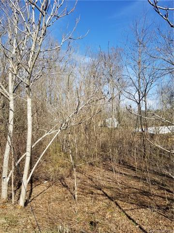 29 Logan Lane, Fletcher, NC 28732 (#3470261) :: RE/MAX RESULTS
