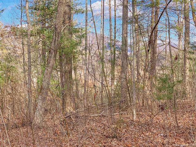 Lot 20 Bobcat Trail, Clyde, NC 28721 (#3470328) :: LePage Johnson Realty Group, LLC