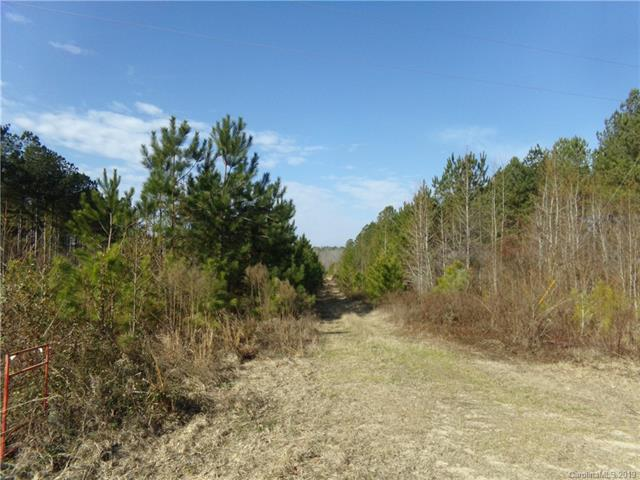 TBD Ross Moore Road, Chesterfield, SC 29709 (#3470406) :: Mossy Oak Properties Land and Luxury