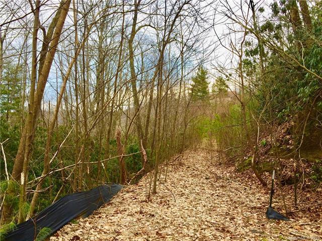 38 Old Lafayette Lane #101, Black Mountain, NC 28711 (#3470407) :: Exit Mountain Realty