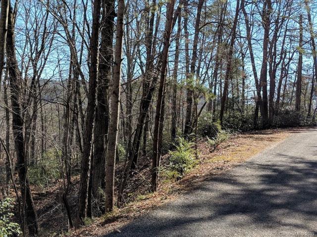 307 Fairway Drive, Lake Lure, NC 28746 (#3470444) :: Puffer Properties