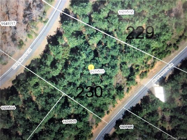 Lot #230 Bitterroot Circle, Rutherfordton, NC 28139 (#3470488) :: Homes Charlotte