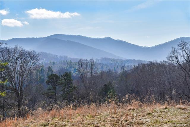 44 Hawberry Court #63, Asheville, NC 28805 (#3471155) :: LePage Johnson Realty Group, LLC