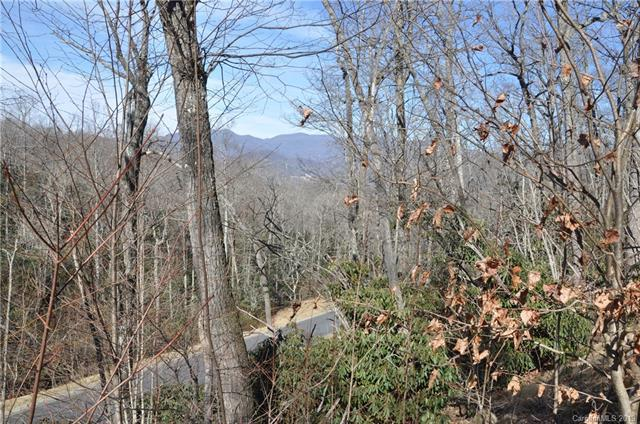 56 Settings Boulevard #250, Black Mountain, NC 28711 (#3471290) :: Exit Mountain Realty