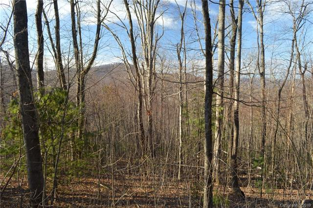 Lot 92 Corbin Mountain Road #92, Tuxedo, NC 28790 (#3471335) :: Robert Greene Real Estate, Inc.
