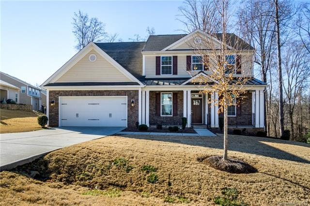 917 Autumn Glen Lane, Lake Wylie, SC 29710 (#3471894) :: Phoenix Realty of the Carolinas, LLC