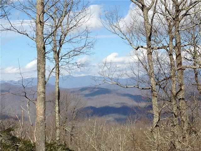 TBD Little Mountain Road #19, Black Mountain, NC 28711 (#3472223) :: Charlotte Home Experts