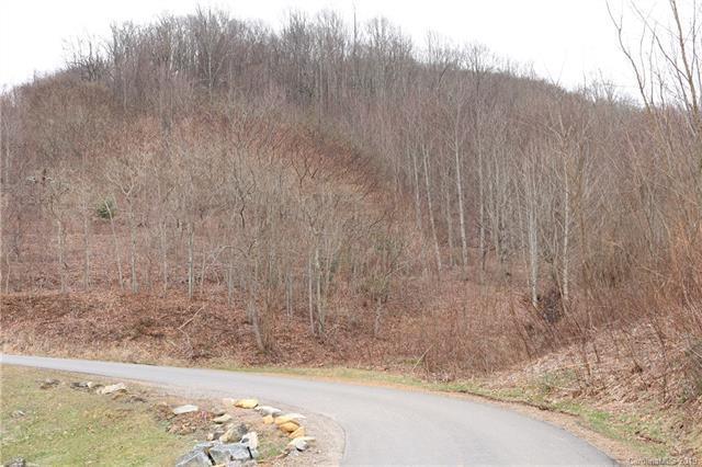 L#5 Gordon Drive #5, Waynesville, NC 28786 (#3472999) :: Exit Mountain Realty