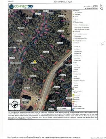 1151 Sunset Pointe Drive, Salisbury, NC 28146 (#3473565) :: LePage Johnson Realty Group, LLC