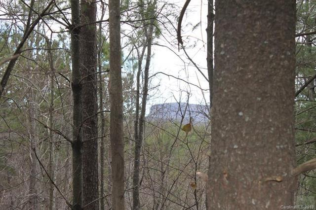 Lot 6 Pisgah Preserve Drive, Nebo, NC 28761 (#3473823) :: Homes Charlotte