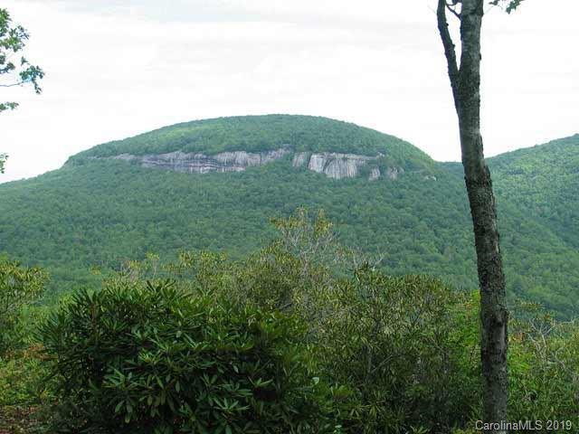 MR 39 Panthertown Road Mr 39, Lake Toxaway, NC 28747 (#3474043) :: Exit Mountain Realty
