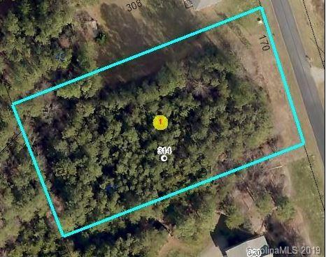 314 Gardner Point Drive, Stony Point, NC 28678 (#3474059) :: Exit Realty Vistas
