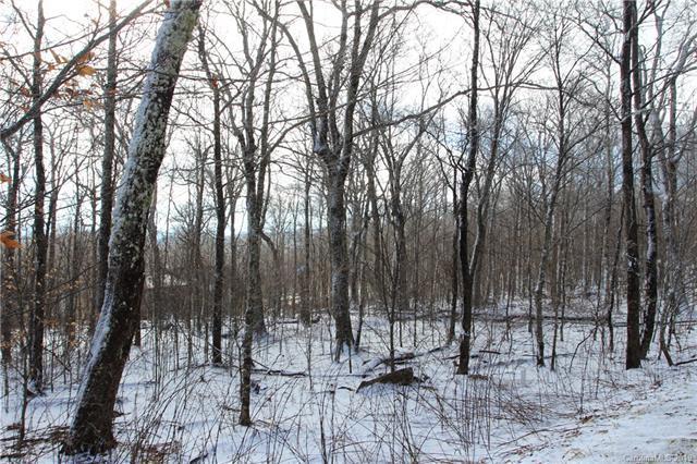 TBD Craggy Pointe #3, Sugar Mountain, NC 28604 (#3474116) :: LePage Johnson Realty Group, LLC
