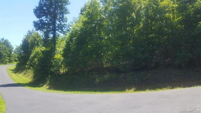 64 Grouse Drive, Nebo, NC 28761 (#3474569) :: High Performance Real Estate Advisors