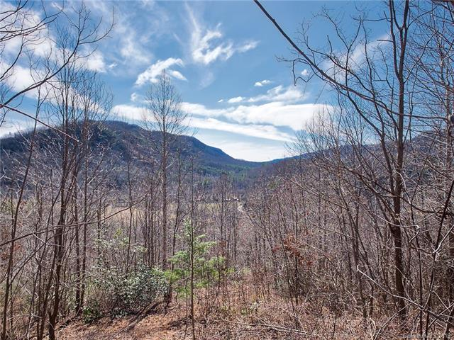 183 Southview Drive 2A, Lake Lure, NC 28746 (#3474744) :: Washburn Real Estate