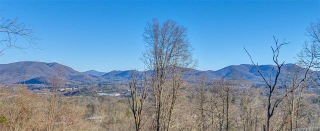 393 Reservoir Road #56, Asheville, NC 28803 (#3474817) :: Puffer Properties