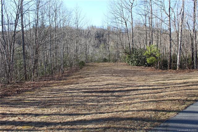 Lot 75 Arcadia Falls Way, Black Mountain, NC 28711 (#3474907) :: Puffer Properties