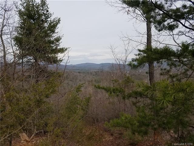 000 Mount Gilead Church Road - Photo 1