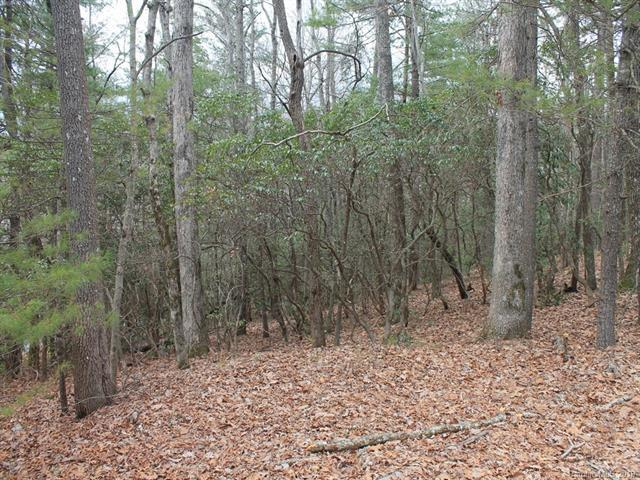 000 Wildlife Trail 1.16 ACRES, Hendersonville, NC 28739 (#3475823) :: Team Lodestone at Keller Williams SouthPark