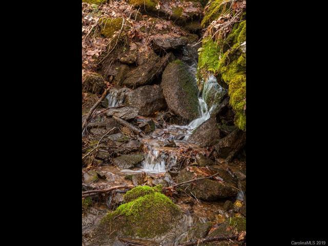 299 High Hickory Trail Trail #32, Swannanoa, NC 28805 (#3475846) :: LePage Johnson Realty Group, LLC