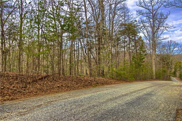 Lot #1 Rhododendron Drive, Saluda, NC 28773 (#3475870) :: Keller Williams Professionals