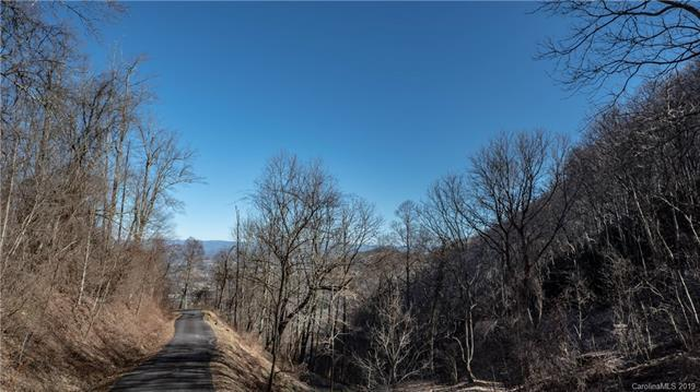 99999 Cave Summit Trail #99, Leicester, NC 28748 (#3475985) :: Carver Pressley, REALTORS®