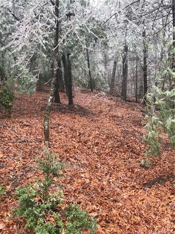 000 S Ridge Drive, Hendersonville, NC 28739 (#3476385) :: Rinehart Realty