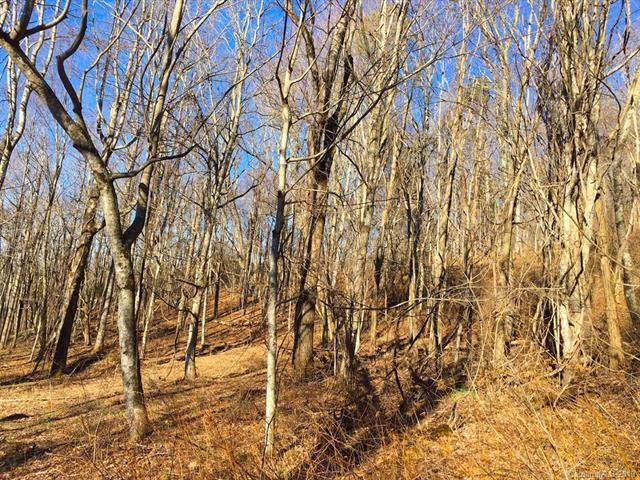 0 Flat Top Mountain Road, Fairview, NC 28732 (#3476922) :: IDEAL Realty