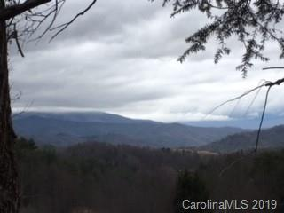 Lot 1 Panther Creek Road #1, Clyde, NC 28721 (#3477000) :: Exit Realty Vistas